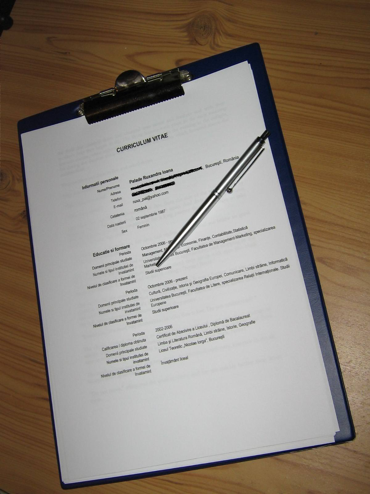resume format  format de cv