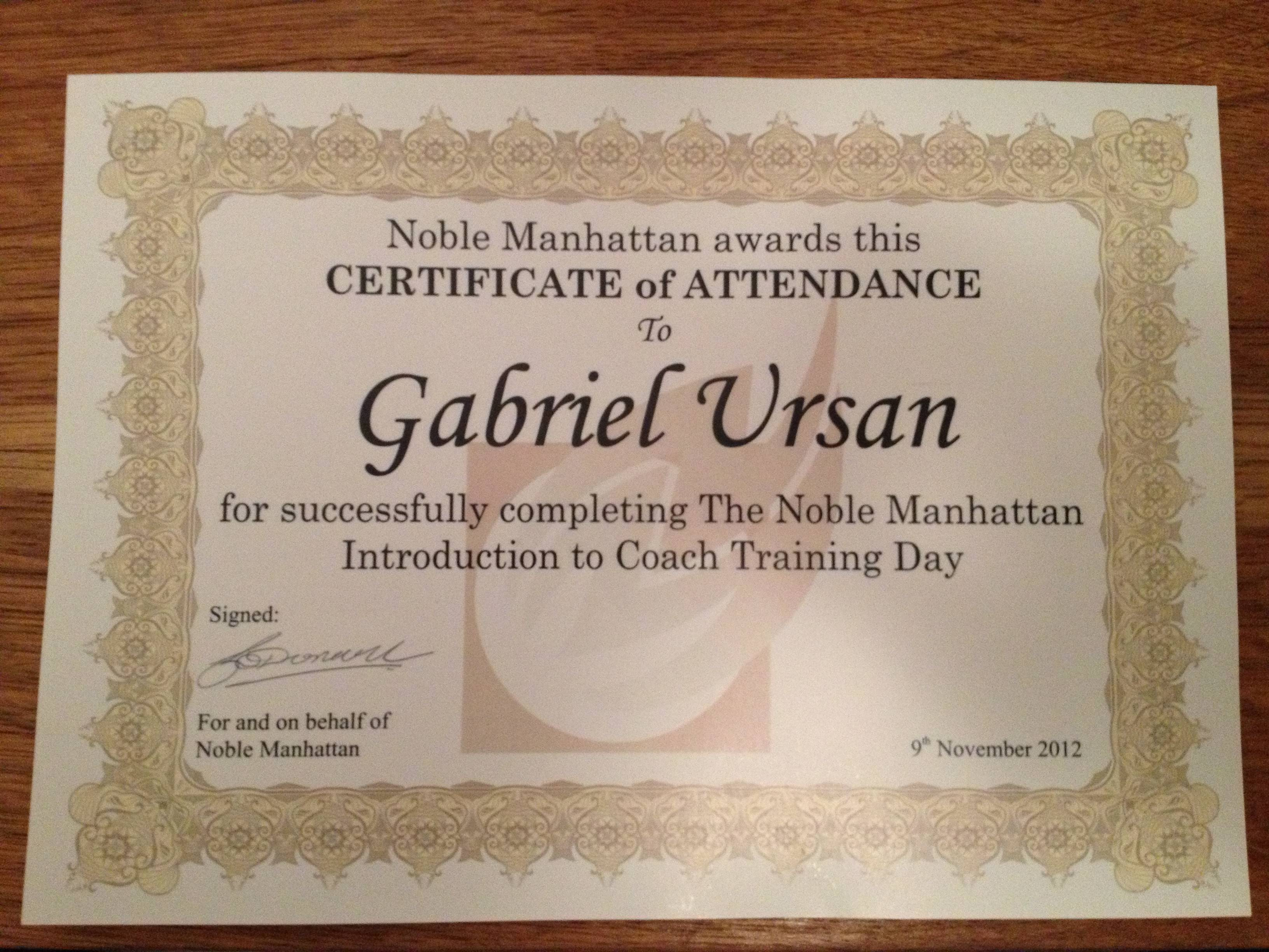 Diploma Introduction to Coaching Gabriel Ursan