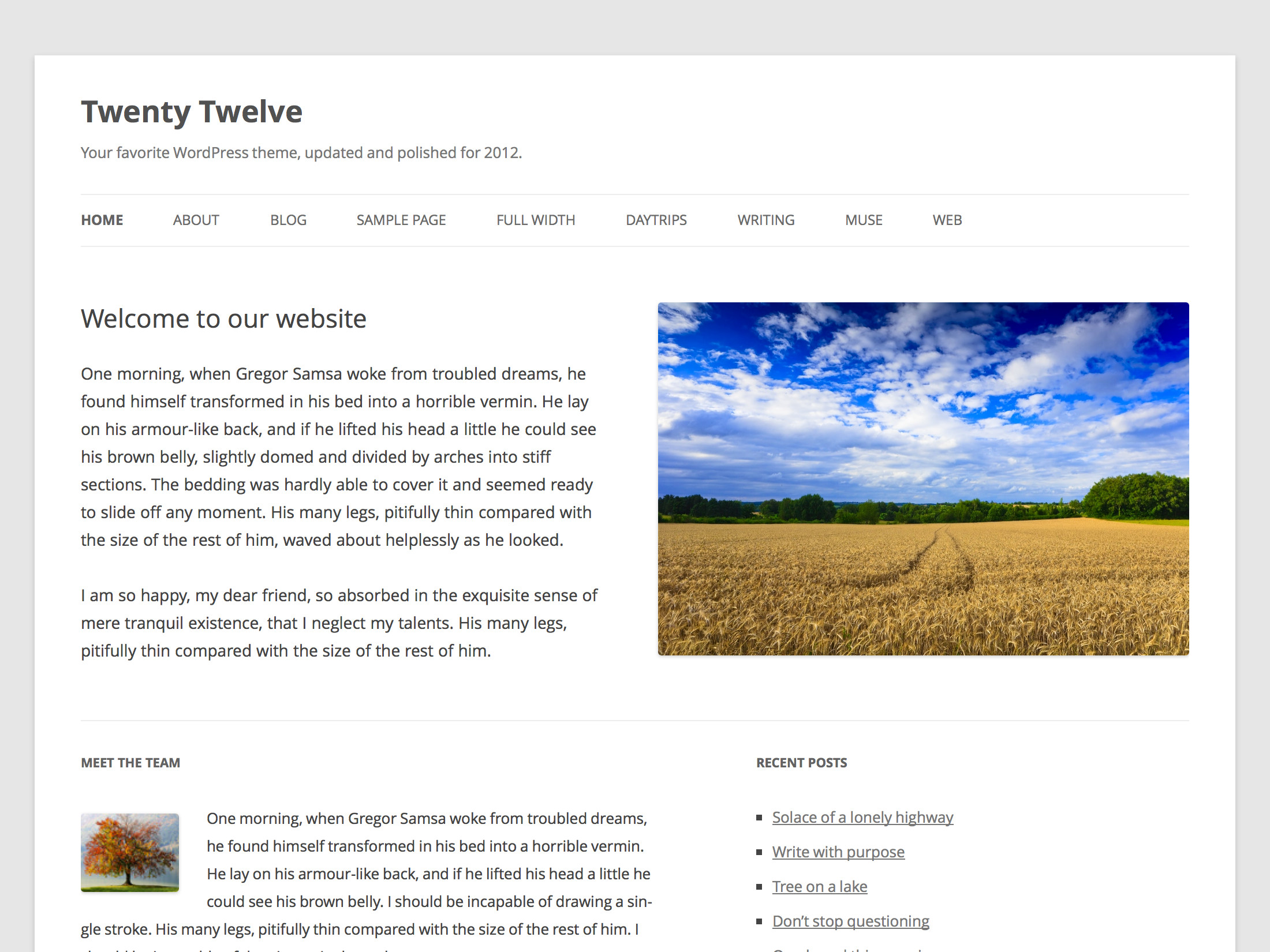 Tema WordPress Twenty Twelve