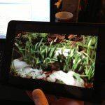 Filme iPad mini 5