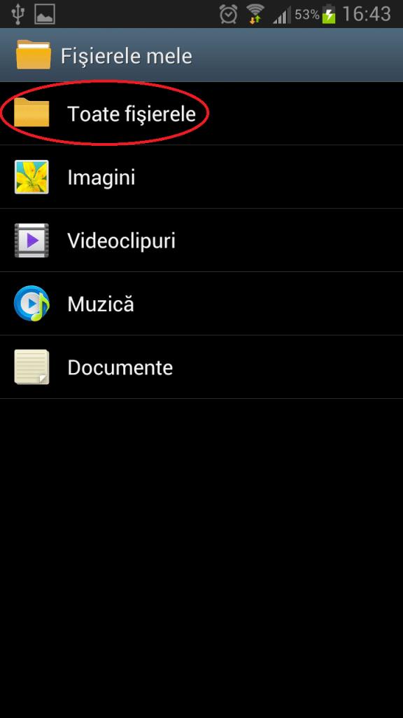 Instalare iGO pe Android – catre aplicatie
