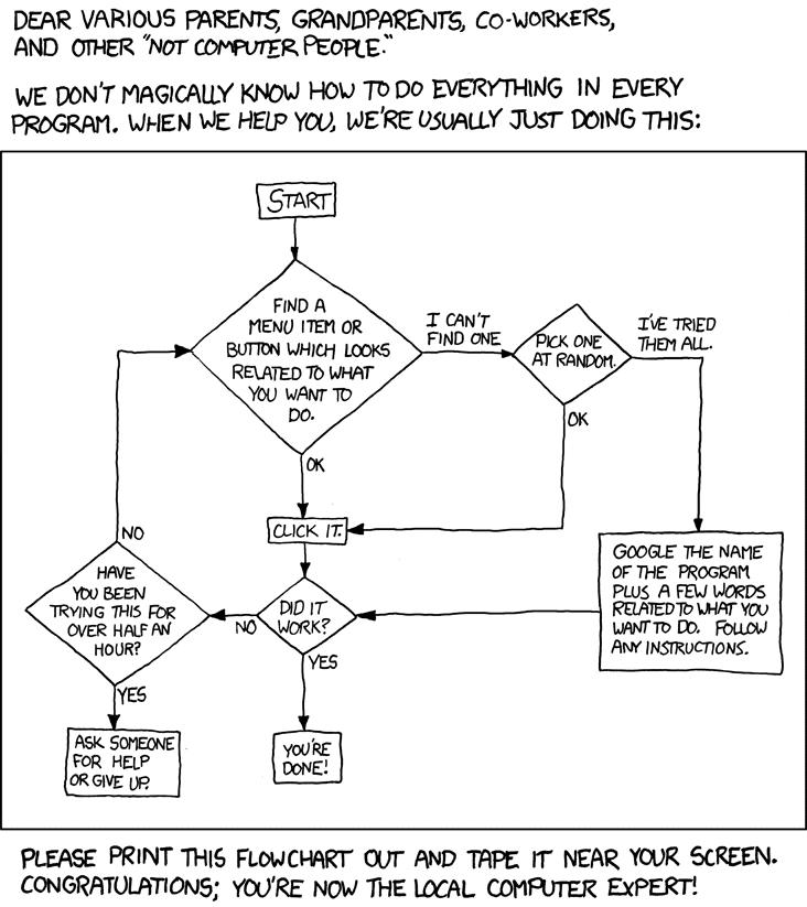 Amuzant: Cum devii expertul IT local?