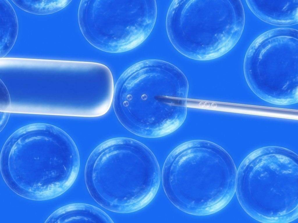 Despre experienta noastra cu celulele stem