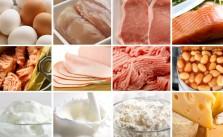 Surse de Proteine