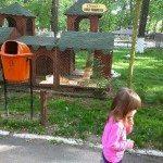 Sara la Zoo Braila Romania 2