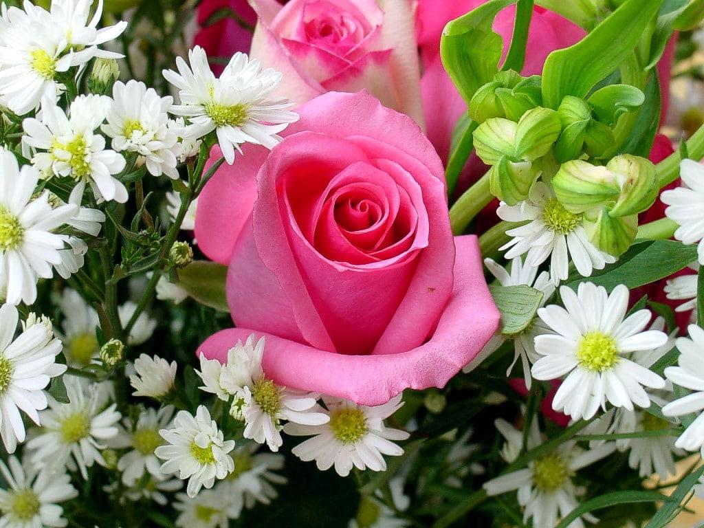 Cu o floare nu faci florărie online