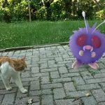 [Ghid Pokemon Go] Ce am învățat despre cum se joacă Pokemon Go în ultimele zile