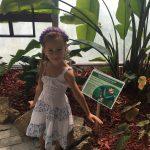 Angajez bonă pentru Sara, fetița mea de 4 ani